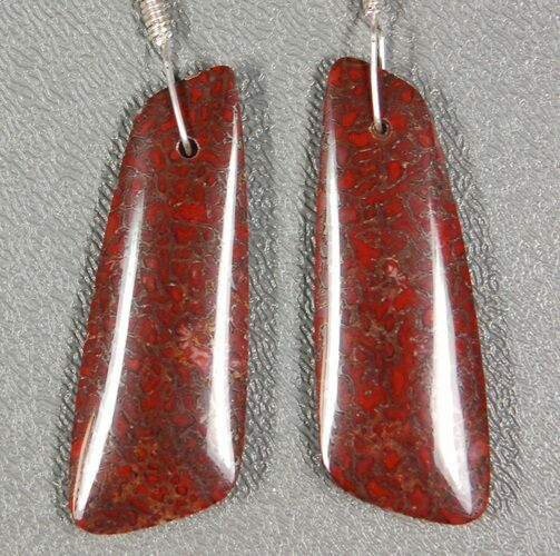 Gorgeous Agatized Dinosaur Bone (Gembone) Earrings