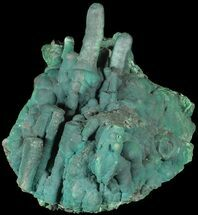 Malachite - Fossils For Sale - #63369