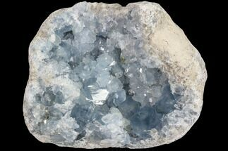 "Buy 7"" Blue Celestite Crystal Crystal Cluster - Madagascar - #87136"