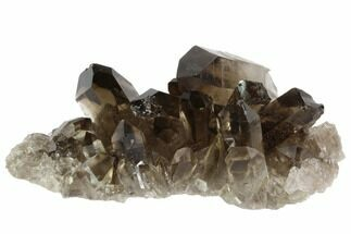 "Buy 3.2"" Dark Smoky Quartz Crystal Cluster - Brazil - #84802"