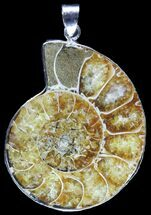 Fossil Ammonite Pendant - 110 Million Years Old For Sale, #89834