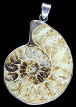 Buy Fossil Ammonite Pendant - 110 Million Years Old - #89848