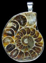 Fossil Ammonite Pendant - 110 Million Years Old For Sale, #89885
