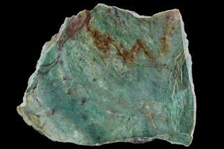 Fuchsite - Fossils For Sale - #89985