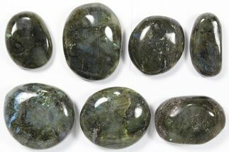 Labradorite - Fossils For Sale - #90384