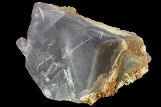 Fluorite  - Fossils For Sale - #90657