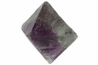 Fluorite - Fossils For Sale - #90924