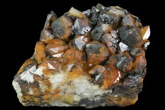 Quartz, Manganese/Iron oxides - Fossils For Sale - #91236