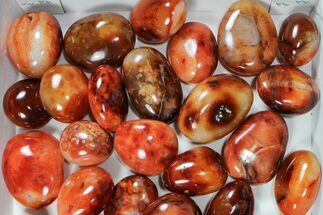 Carnelian Agate - Fossils For Sale - #91449