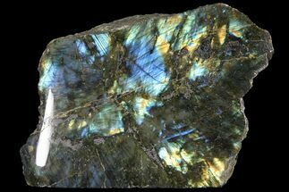 Labradorite - Fossils For Sale - #92034