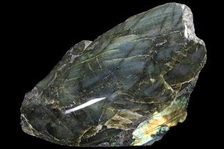 "Buy 7.6"" Wide, Single Side Polished Labradorite - Madagascar - #92062"