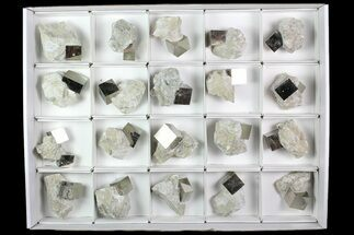 Pyrite - Fossils For Sale - #92556