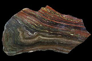 Tiger Iron Stromatolite - Fossils For Sale - #92817