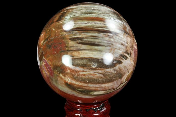 "Bargain, 3.3"" Colorful Petrified Wood Sphere - Madagascar"