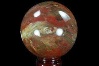 "3.6"" Colorful Petrified Wood Sphere - Madagascar For Sale, #92993"