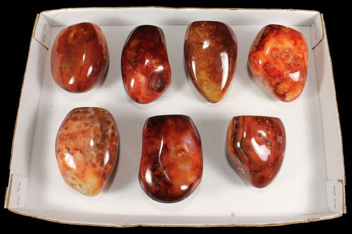 "Wholesale Lot: 3.5-4.5"" Cut Base Polished Carnelian - 7 pieces"