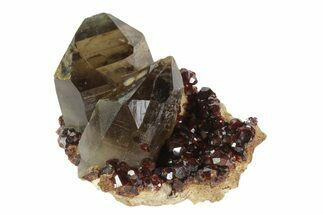 "Buy 3.1"" Spessartine Garnet & Smoky Quartz Association - China - #92704"