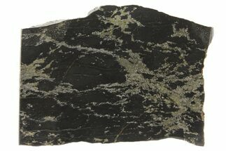 "2.1"" Polished, Apache Gold (Chalcopyrite) Slab - Arizona For Sale, #93797"