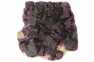 "3.4"" Dark Purple Cubic Fluorite on Quartz - China For Sale, #94322"
