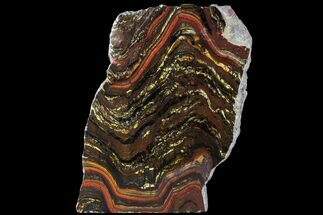 Tiger Iron Stromatolite - Fossils For Sale - #95892