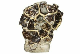 "Buy 13.5"" Polished Septarian ""Spiderweb"" Sculpture (44 lbs) - #93160"