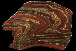 Tiger Iron Stromatolite - Fossils For Sale - #96234