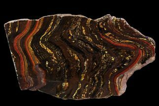 "Buy 6.8"" Polished Tiger Iron Stromatolite - (2.7 Billion Years) - #96226"