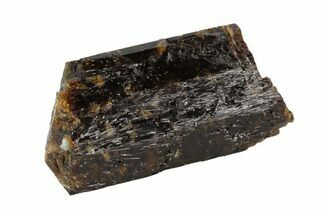 "1.22"" Brown Dravite Tourmaline Crystal - Western Australia For Sale, #95405"