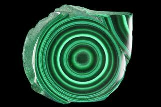 "Buy 1.32"" Polished Malachite Slab - Congo - #94480"