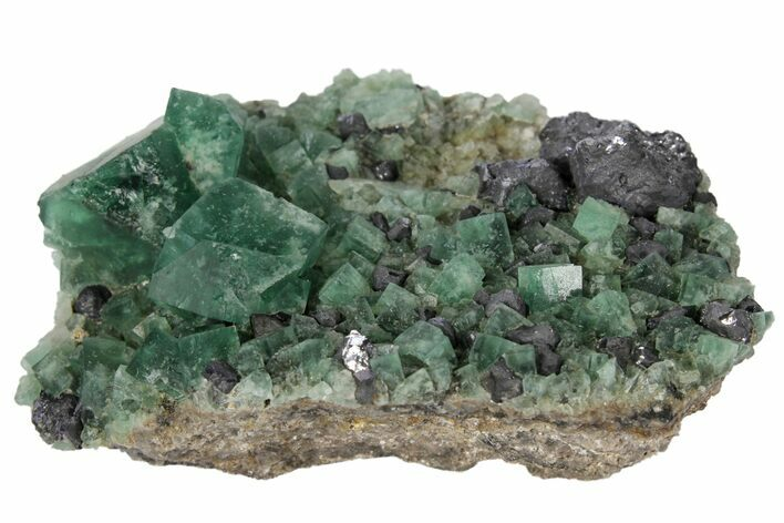 "2.8"" Fluorite and Galena Crystal Association -  Rogerley Mine"
