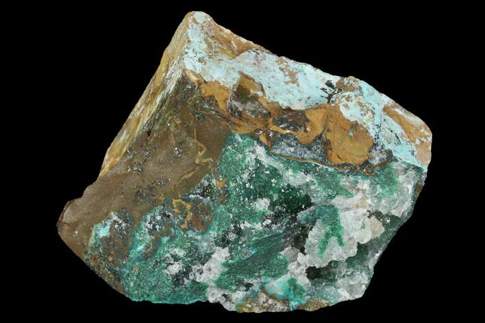 "1.8"" Atacamite, Calcite & Quartz Association - Peru"