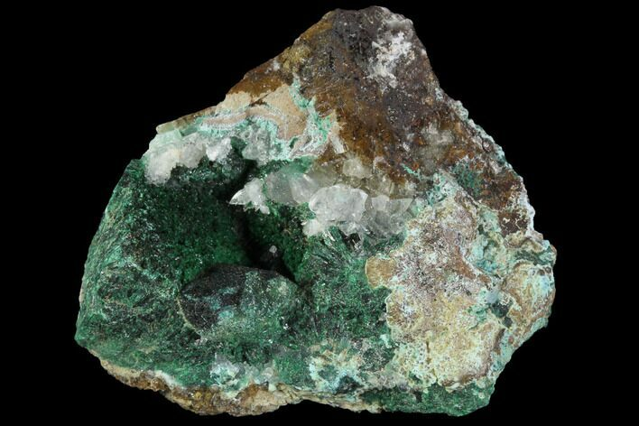 "1.7"" Atacamite, Chrysocolla & Selenite Association - Peru"