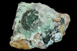 "Buy 1.75"" Quartz, Atacamite & Chrysocolla Association - Peru - #98149"