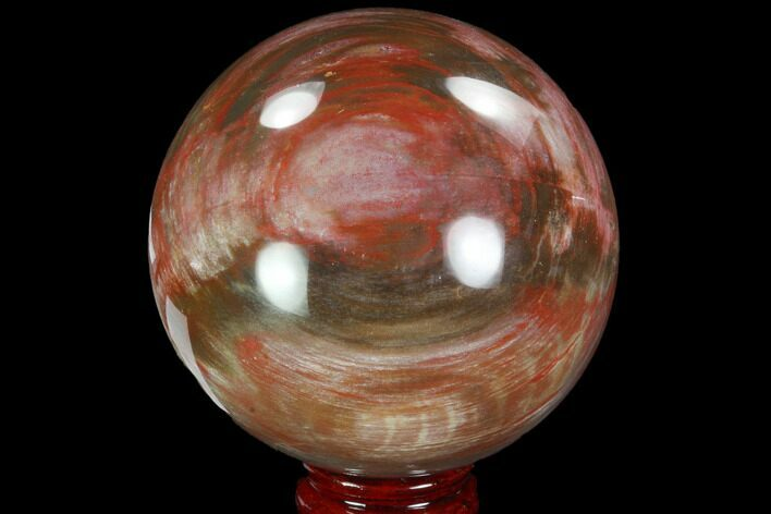 "3.95"" Colorful, Petrified Wood Sphere - Madagascar"