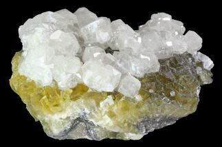 Fluorite & Calcite - Fossils For Sale - #98706