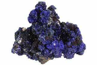 "2.4"" Vibrant Azurite Nodular Formation - Morocco For Sale, #98753"