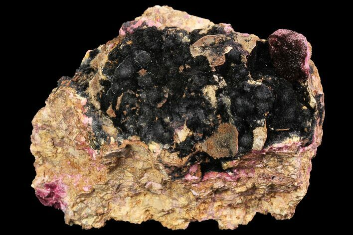 "3.8"" Goethite after Fibrous Roselite Crystals - Morocco"