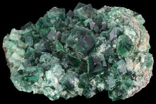 "Buy 4.2"" Fluorite Crystal Cluster -  Rogerley Mine, UK - #99457"