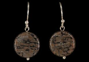 Buy Polished Fossil Dinosaur Bone (Gembone) Earrings - #93346