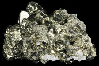 Pyrite - Fossils For Sale - #99129