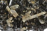 3.2 Black Tourmaline (Schorl) & Smoky Quartz Crystals - Namibia - #100374-1