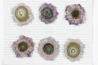 "Wholesale: ~1.5"" Amethyst Stalactite Slices (6 Pieces) For Sale, #101654"