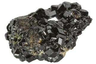 Garnet var. Andradite var. Melanite & Pyrite - Fossils For Sale - #102444