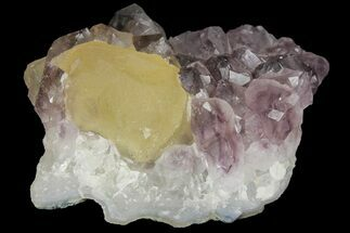 "2.7"" Botryoidal Yellow Fluorite on Amethyst - India For Sale, #102380"