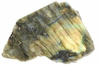 "4"" Wide, Single Side Polished Labradorite - Madagascar For Sale, #103001"