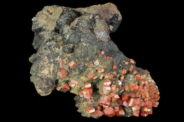 "1.9"" Red Vanadinite Crystals On Manganese Oxide - Morocco"