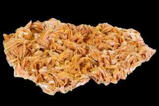 "Buy 6.5"" Pink and Orange Bladed Barite - Mibladen, Morocco - #103735"