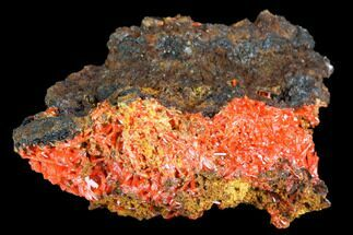 Crocoite - Fossils For Sale - #103803
