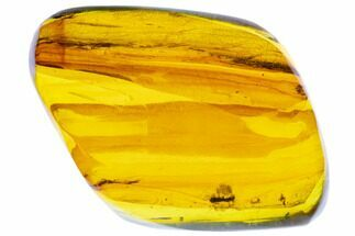 "1.9""  Polished Fossil Amber (12 grams) - Mexico For Sale, #104270"