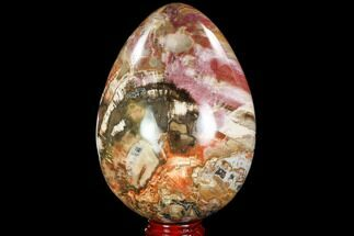 "7.7"" Colorful, Polished Petrified Wood ""Egg"" - Triassic For Sale, #104624"
